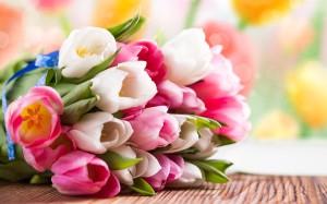 rabstol_net_tulip_35