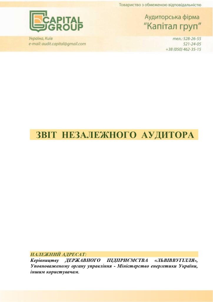 Аудиторський звіт за 2019_page-0001