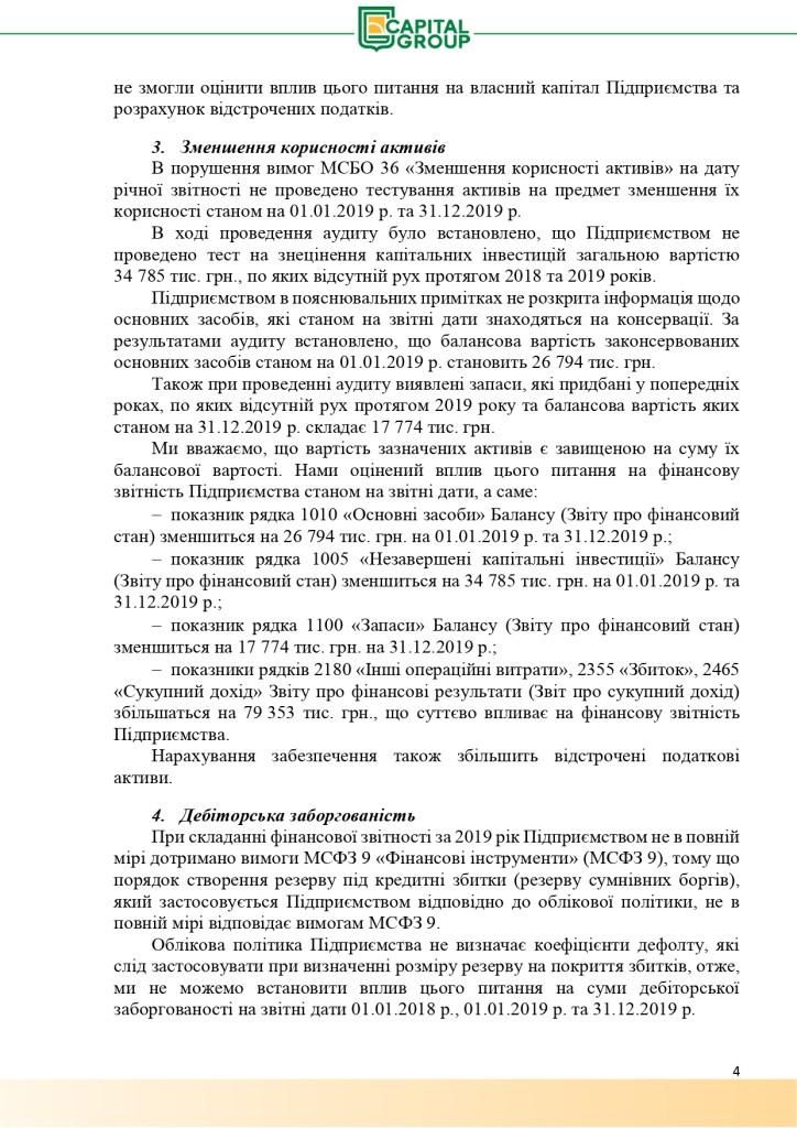 Аудиторський звіт за 2019_page-0004