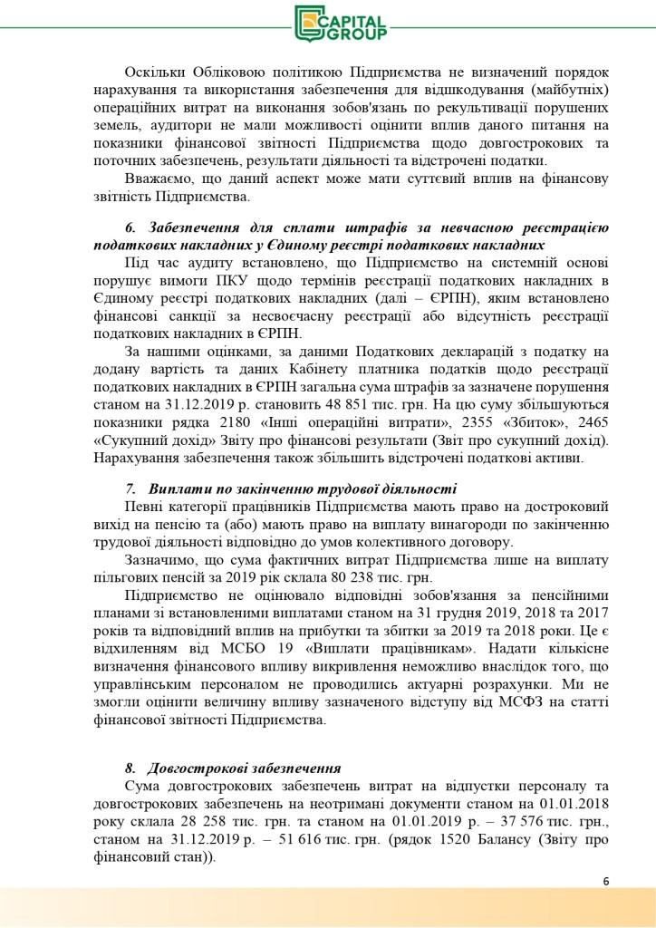 Аудиторський звіт за 2019_page-0006