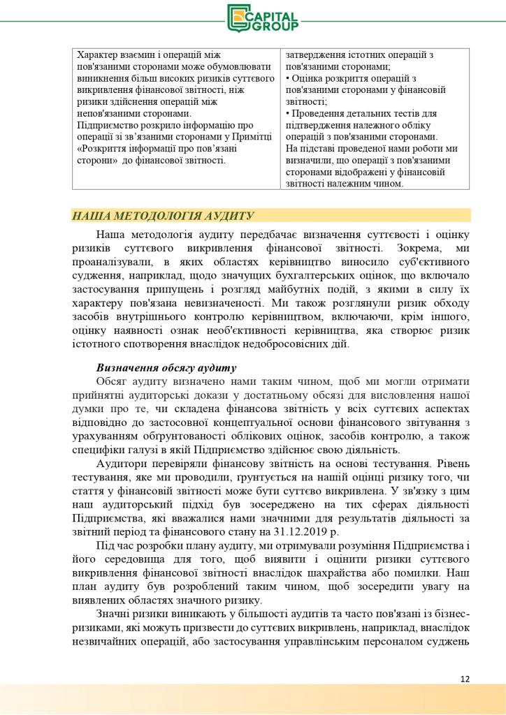 Аудиторський звіт за 2019_page-0012