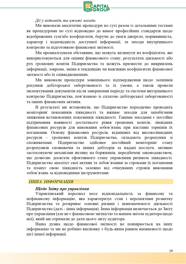 Аудиторський звіт за 2019_page-0014