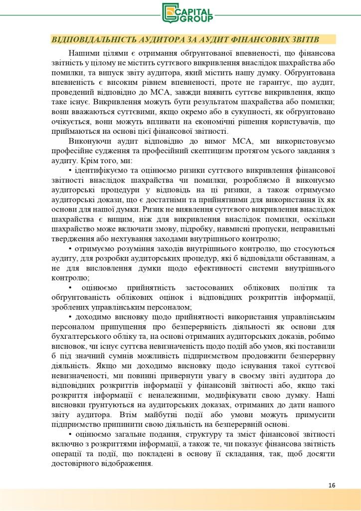 Аудиторський звіт за 2019_page-0016