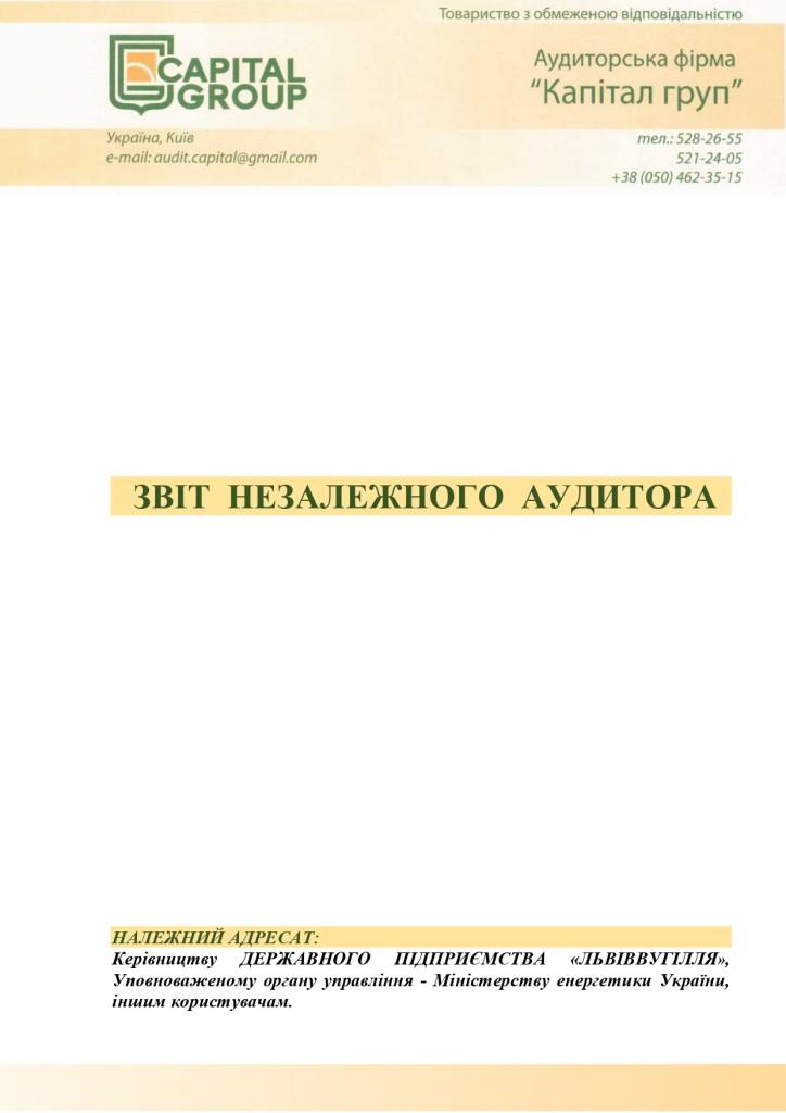Аудиторський звіт_f_page-0003