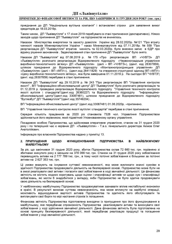 Аудиторський звіт_f_page-0029