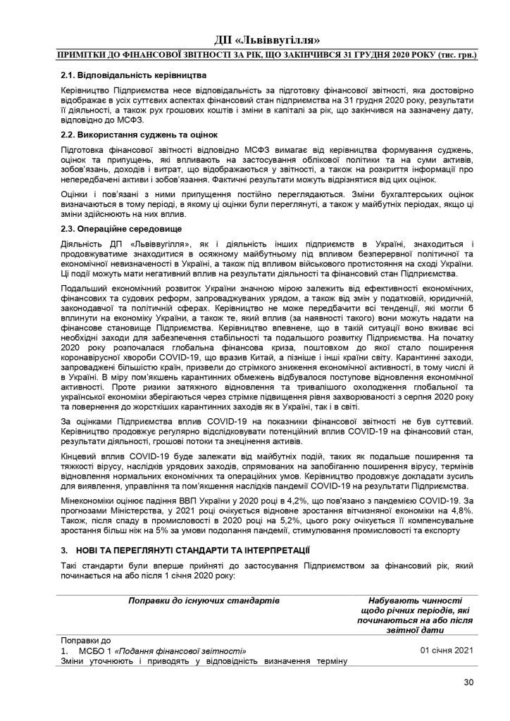 Аудиторський звіт_f_page-0030
